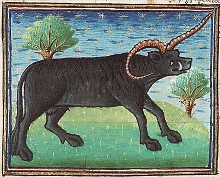 Yale. © Museum Meermanno, MMW, 10 B 25, Folio 14r.