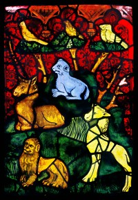 Fig. 2. Erfurt Cathedral, Genesis Window, sII 4b, the Creation of the Animals (detail), c.1370 (c) CVMA Deutschland/Potsdam
