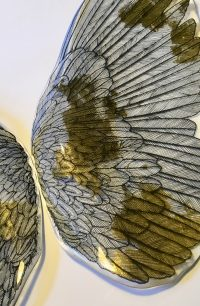Fig. 3. Detail of Wings by Pippa Stacey, Inspired by Burne-Jones.